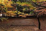 Sumo ground. Kyushu. Japan.