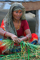 Preparing the wheat for burning later that night for the Holi Fesival, Pushkar, India