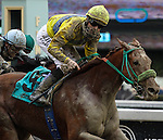Qiaona with Garrett Gomez aboard wins the California Breeders Champion Stakes at Santa Anita Park in Arcadia, California on January 26, 2013.
