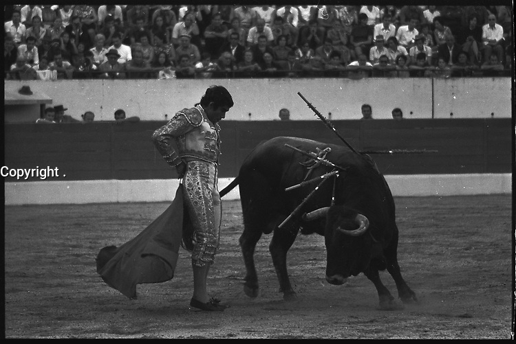 20 Septembre 1970. Vue de la corrida de Falcon dans les arènes de Toulouse.