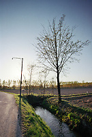 Binasco (Milano), Parco Agricolo Sud. Canale d'irrigazione lungo un campo agricolo --- Binasco (Milan), Rural Park South. Drainage ditch along an agricultural field
