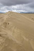 Great Kobuk Sand Dunes in the Kobuk Valley National Park, Arctic, Alaska.