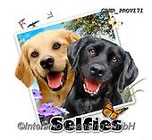 Howard, SELFIES, paintings+++++,GBHRPROV171,#Selfies#, EVERYDAY