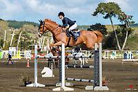 NZL-Tegan Fitzsimon rides Campari. Class: 23 - Alltech Horse 1.35- 1.40m. 2020 NZL-Fiber Fresh GP SJ Show Spring Series Show. Woodhill Sands. Sunday 20 September. Copyright Photo: Libby Law Photography