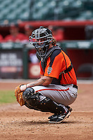 San Francisco Giants Ty Ross (8) during an instructional league game against the Arizona Diamondbacks on October 16, 2015 at the Chase Field in Phoenix, Arizona.  (Mike Janes/Four Seam Images)