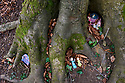 Toy family in a tree in the woods in Cotswold Village  CREDIT Geraint Lewis
