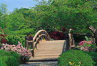 Wooden arch bridge