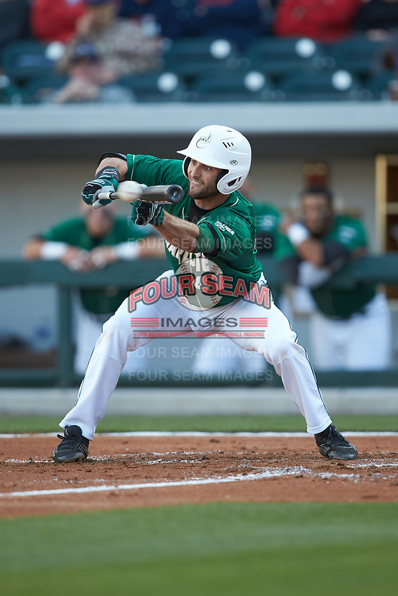 Derek Gallello (41) of the Charlotte 49ers lays down a bunt against the North Carolina State Wolfpack at BB&T Ballpark on March 29, 2016 in Charlotte, North Carolina. The Wolfpack defeated the 49ers 7-1.  (Brian Westerholt/Four Seam Images)