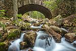 Jordan Stream and the Fieldstone Bridge in Acadia National Park, Maine, USA