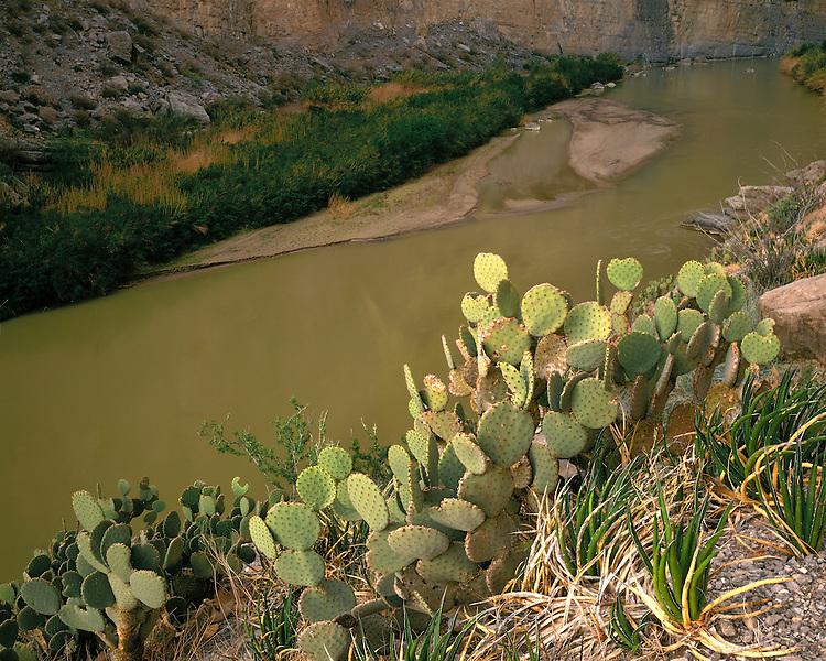 View of the Rio Grande River in Santa Elena Canyon; Big Bend National Park, TX