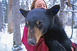 513 Minnesota's Black Bear Dens 2