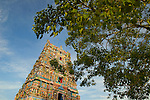 Travel: India - the South