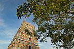 India, Kerala, Allepey. Kidangamparanbu Bhagavathi Temple.