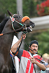25 July 2009: Wings of Sound (2yo by Vindication) at Del Mar Race Track, Del Mar, CA