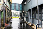 A very wet day on the historic Cocatoo Island in Sydney Harbour, Australia