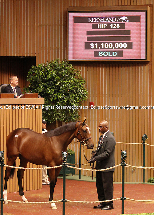 Hip #128 A.P. Indy - Moonlight Sonata filly sold for $1,100,000 at the Keeneland September Yearling sale to Whispher Hill Farm, consigned by Mill Ridge Farm.  September 10, 2012.