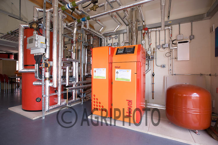 Boiler system used to burn willow wood chip as an alternative form of energy.