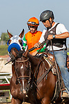 """DEL MAR, CA  AUGUST 25:   #8 Battle of Midway, ridden by Flavien Prat, in the post parade before the Pat O'Brien Stakes (Grade ll), Breeders' Cup """"Win and You're In Dirt Mile Division"""" on August 25, 2018 at Del Mar Thoroughbred Club in Del Mar, CA.(Photo by Casey Phillips/Eclipse Sportswire/Getty ImagesGetty Images"""