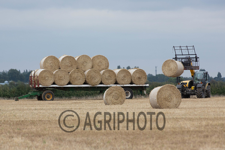 7.9.2020 Loading round bales of barley straw onto a trailer in Lincolnshire <br /> ©Tim Scrivener Photographer 07850 303986<br />      ....Covering Agriculture In The UK.