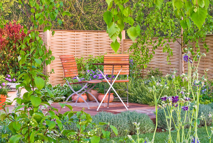 Privacy fencing to create backyard oasis screening with raised deck patio, garden furniture chairs and table, birch tree, lawn grass, shrub hedging, flowers, ferns, foliage plants