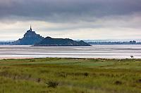 Europe/France/Normandie/Basse-Normandie/50/Baie du Mont-Saint-Michel/Env de Genêts:  Dunes de Dragey // Europe/France/Normandie/Basse-Normandie/ Bay of Mont Saint Michel, listed as World Heritage by UNESCO/ Genêts: Dragey Dunes
