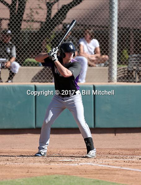 Casey Golden - 2017 AIL Rockies (Bill Mitchell)