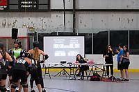 Brandywine Brawlers vs Gotham Diamond District A 8-17-19