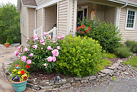 Patio Entrance Garden, peonies, spiraea, containers, birdhouse,  House curb appeal entry, raised beds, hanging pot of petunias, front door