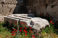 Greece, Athens. The Acropolis with several famous ancient strucures. Red flowers benath the wall.