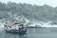 Chili, Patagonie, Peninsule de Brunswick au sud de Punta Arenas // Fuerte Bulnes, Peninsula de Brunswick, Winter, South of Punta Arenas, Patogonia, chile