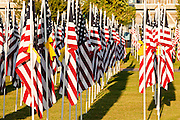 "10 SEPTEMBER 2011 - TEMPE, AZ:     Flags on display in the ""Healing Field"" in Tempe, AZ. The ""Healing Field,"" a display of 2,996 flags, one for each person killed in the September 11 terrorists attacks on the World Trade Center in New York City and Washington DC, have become an annual tradition in Tempe. The event is sponsored by the National Exchange Club.    PHOTO BY JACK KURTZ"
