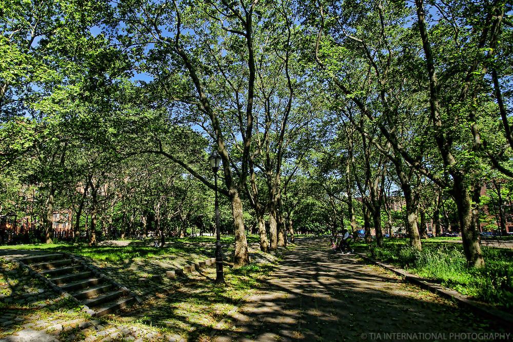 Fort Greene Park, Brooklyn