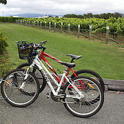 Bikes parked at the cellar door at Cloudy Bay Vineyard, Jackson Road, Marlborough, New Zealand..The winery and vineyards are situated in the Wairau Valley in Marlborough at the northern end of New Zealand's South Island. This unique and cool wine region enjoys a maritime climate with the longest hours of sunshine of any place in New Zealand. Wairau Valley, Marlborough, New Zealand. 9th February 2011. Photo Tim Clayton