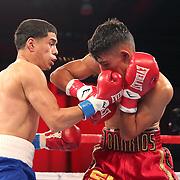 Olympian Antonio Vargas (L) fights against Luis Fernando Saavedra during a Telemundo boxing match between at Osceola Heritage Park on Friday, February 23, 2018 in Kissimmee, Florida.  (Alex Menendez via AP)