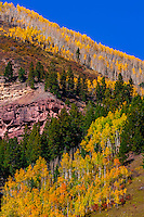 Fall color, Telluride, Colorado USA.