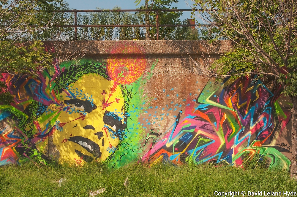 Psychadelic Wall Mural, graffiti art, trees, third eye, wild grass, street overpass, colorful images, Lower West Side Chicago, Illinois, copyright 2015 David Leland Hyde.