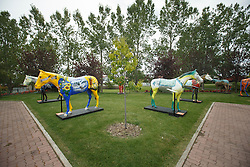 Spruce Meadows, tournament grounds<br /> Spruce Meadows Masters - Calgary 2015<br /> © Hippo Foto - Dirk Caremans<br /> 08/09/15