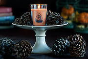 Scented Pumpkin Spice Candle on antique cake plate with books and seasonal pumpkins and pine cones beautifully lit.