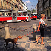 Thank you @instagram and everybody else for your interest. So hot that even the dogs do not like to walk...#prague #praha #prag #czechrepublic #dog #whateverthatmeans #followers #instagram #panos #latergram #dailylife #tschechien #public #street #ujezd #tram