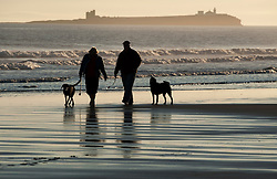 © Licensed to London News Pictures. 12/03/2012. Bamburgh, UK. Dog walkers on Bamburgh Beech at sunrise in Northumberland, North East England on March 12th, 2012. Photo credit : Ben Cawthra/LNP.
