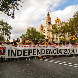 """Catalan independence supporters carry a banner that reads, """"Independence 2014, now yes!"""" during National Day of Catalonia."""