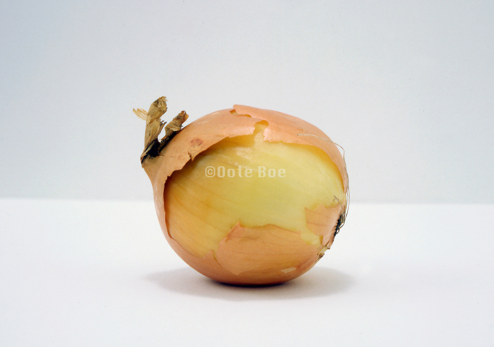 still life of onion with torn outer skin