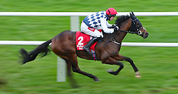 Ash Hill ridden by Derek O'Connor wins The Midland Legal Solicitors Flat Race during day three of the Leopardstown Christmas Festival at Leopardstown Racecourse.