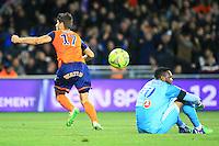 Joie Paul LASNE / deception Steve MANDANDA - 09.01.2015 - Montpellier / Marseille - 20eme journee de Ligue 1<br />Photo : Nicolas Guyonnet / Icon Sport