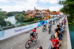 Peloton at Novo mesto during the 5th Stage of 27th Tour of Slovenia 2021 cycling race between Ljubljana and Novo mesto (175,3 km), on June 13, 2021 in Slovenia. Photo by Matic Klansek Velej / Sportida