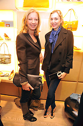 Left to right, MARY GREENWELL and ALLEGRA HICKS at a Champagne & chocolate party hosted by Roger Vivier at their store in Sloane Street, London on 12th February 2009.  The evening was in aid of The Silver Lining charity.