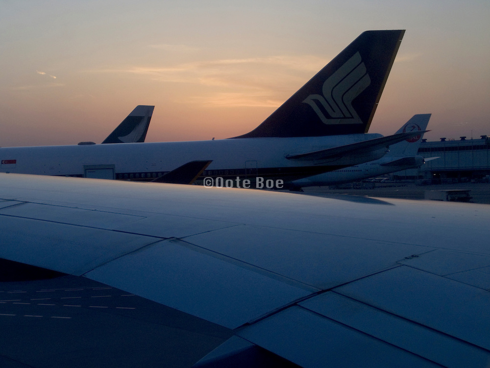 wing and tails of commercial passenger airplanes against an evening sky