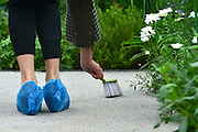 """© Licensed to London News Pictures. 20/05/2013. London, UK A woman sweeps a path in the """"Stop the Spread"""" garden prior to judging. Press day at Chelsea Flower Show 2013. The centenary edition of the show attracts large number of visitors and is already sold out before opening day. Photo credit : Stephen Simpson/LNP"""