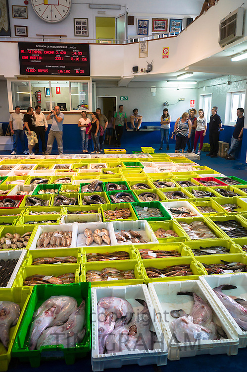 Auction of freshly-caught fish at Confradia de Pescadores de Luarca, Confederation of Luarca Fishermen, Puerto Luarca, Spain