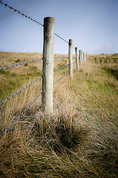 Barbed wire fencing, Dorset, England, UK.
